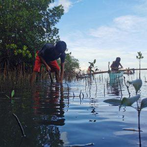 Mangroves matter, it's Generation Restoration